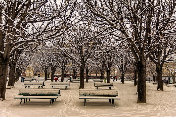 parc gol iarna