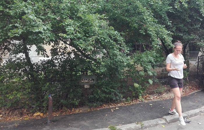 femeie langa copac in oras